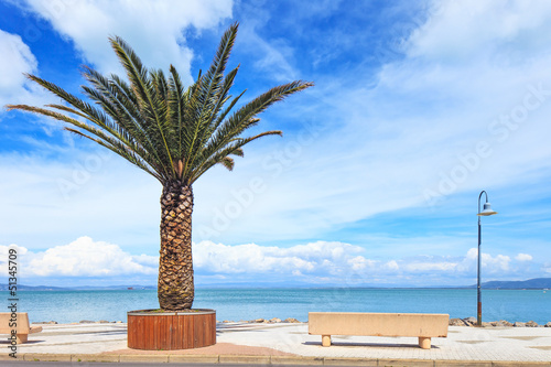 Palm tree, bench and lamp on the sea in Argentario, Italy.