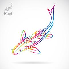Vector image of an carp koi , illustration - vector