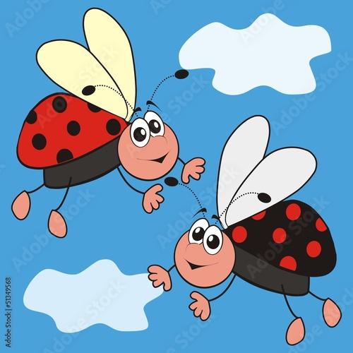 Foto op Aluminium Lieveheersbeestjes ladybirds