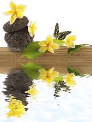 concept détente : bambou, galets, papillon, fleurs