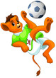 Lion Ball Footbal Clipart Cart...