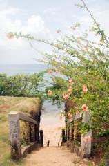 stairway entry to sandy beach  flowers Caribbean Sea Little Corn