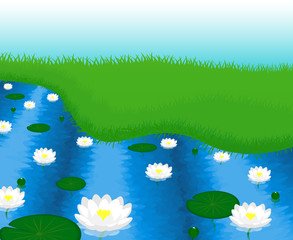 The picture of the lake with water lilies, vector illustration