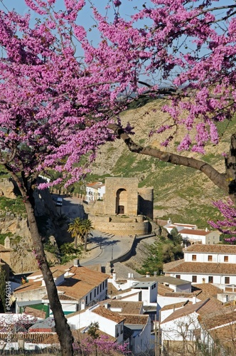 Town and Arabic tower, Antequera, Spain © Arena Photo UK