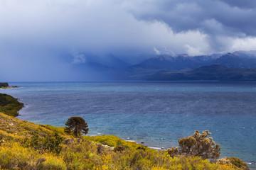 National park Lanin, Patagonia, Argentina