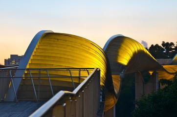 Wave Bridge, Mount Faber Park, Singapore