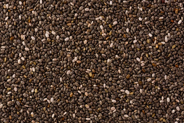 Chia Seeds (Salvia hispanica)