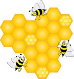 Honey comb with bees, vector illustration