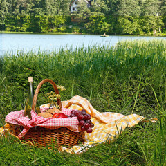 picnic on the grass near lake