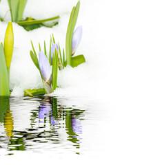 Warten auf den Frühling, Tauwetter