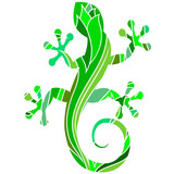 green salamander with a pattern for the vector