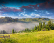 Beautiful summer landscape in the Carpathian mountains. Ukraine,