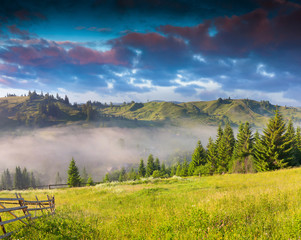 Beautiful summer landscape in the Carpathian mountains. Ukraine,