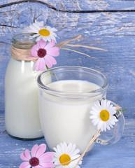 Vorbeugen für gesunde Knochen: Frische Milch