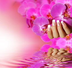 French Nails - pink background
