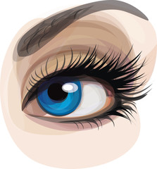 Vector beautiful blue woman's eye