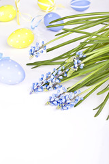 eggs and  blue spring flowers muscari