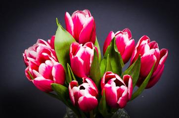 Jugendstil Tulpen
