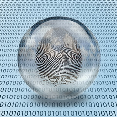 Fingerprint and binary code