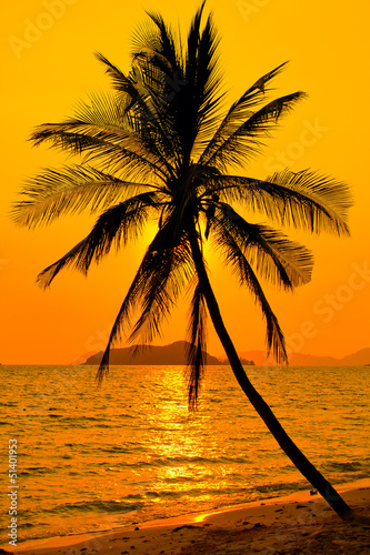 Tropical sunset - 51401953