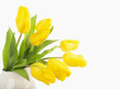 Yellow tulips in a jug on a white background