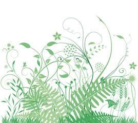grüne Gräser und Pflanzen