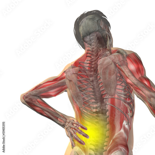 Conceptual human back pain anatomy
