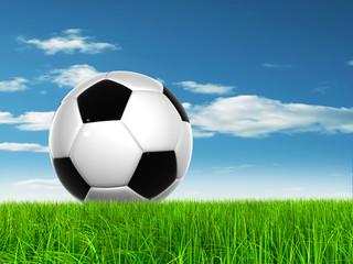 Conceptual soccer ball in grass