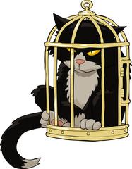 Cat in the bird cage