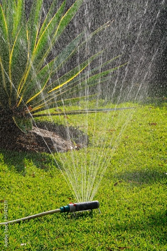 Mediterranean garden and sprinkler © Arena Photo UK