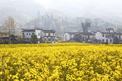 Rural landscape in Wuyuan, Jiangxi Province, China.