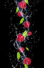 Raspberries in water splash, isolated on black background