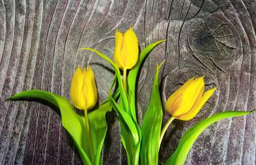 Three tulips on wood