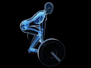 3d rendered medical illustration - correct lifting posture