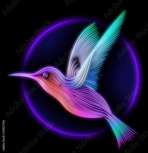 3d render of colibri bird - hummingbird