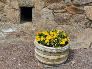Barrique de fleurs