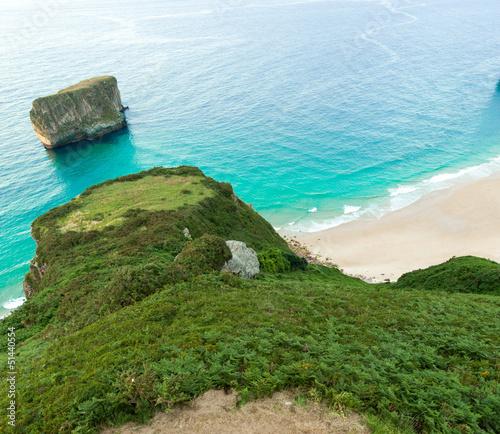 Cove and vegetation
