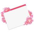 Hibiscus   Card  Illustration