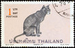 Blue point Siamese cat (Thailand 1970)