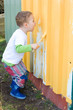 Kleiner Junge steicht den Zaun