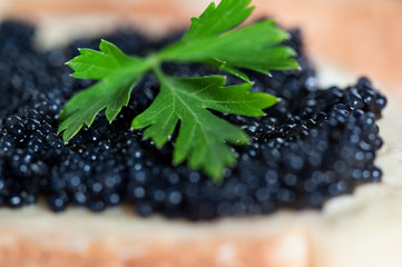 Black caviar on a slice of bread with parsley