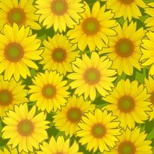tournesol fleur de fond sans soudure