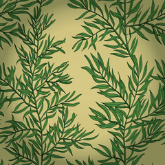 Seamless vintage background with green rosemary. Eps10