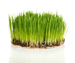 Green grass with fertile soil isolated on white