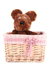 Beautiful basket with toy bear isolated on white