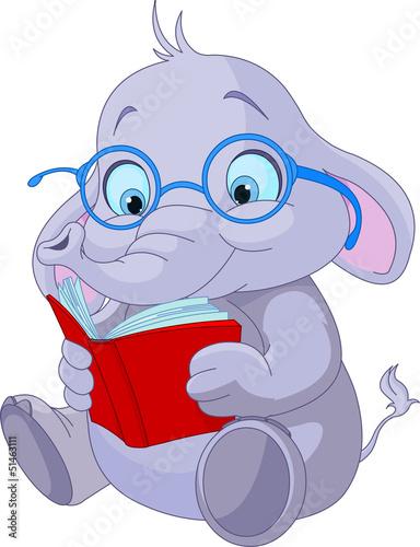 Cute Elephant Education