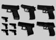 the firearm