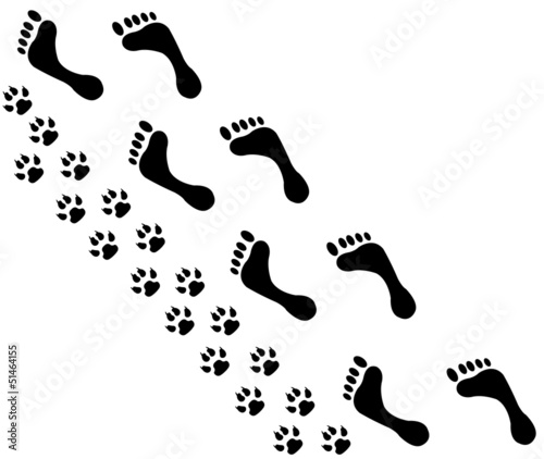 People and pet footsteps and foot with pain