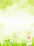 Fototapety natural green background Vector