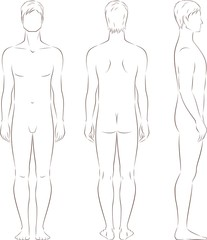 Vector illustration of man's figure. Front, back, side views